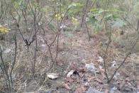 For Sale Plot - Neighborhood Bahumbu Kinshasa Nsele