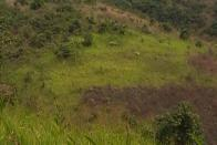 For Sale Plot - Neighborhood Kimwenza Kinshasa Mont-Ngafula