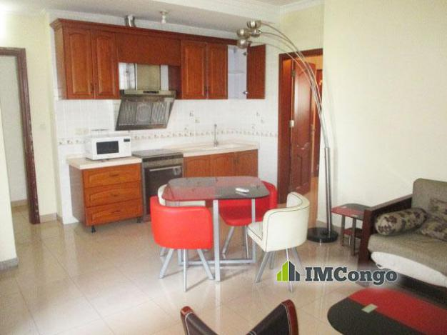 Furnished luxury apartment - Downtown