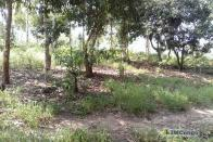 For Sale Plot - Neighborhood Zamba Telecom Kinshasa Mont-Ngafula