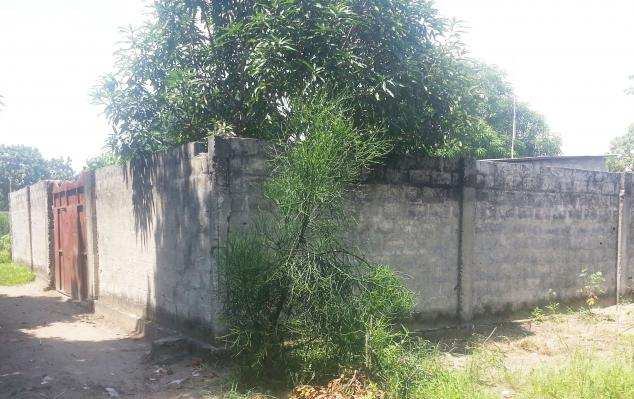IMCongo - Fenced plot to seize - Mpasa-Maba