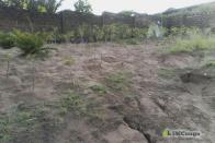 For Sale Land - Neighborhood Bianda Kinshasa Mont-Ngafula