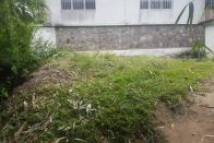 For Sale Plot- Neighborhood Bumba Kinshasa Ngaliema