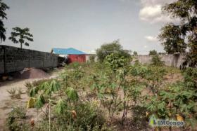 A vendre Terrain à Saisir - Kinkole  kinshasa Nsele