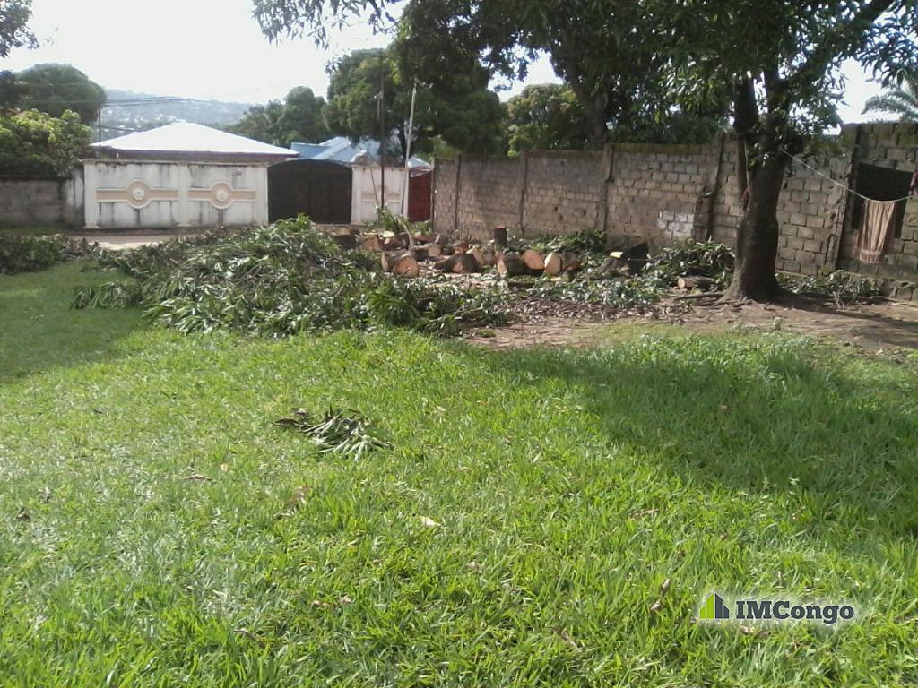 Yaku uzisha Kiwanja - Mtaa Masanga-mbila Kinshasa Mont-Ngafula