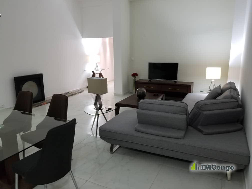 A louer Appartement de standing meublé - Centre ville  Kinshasa Gombe
