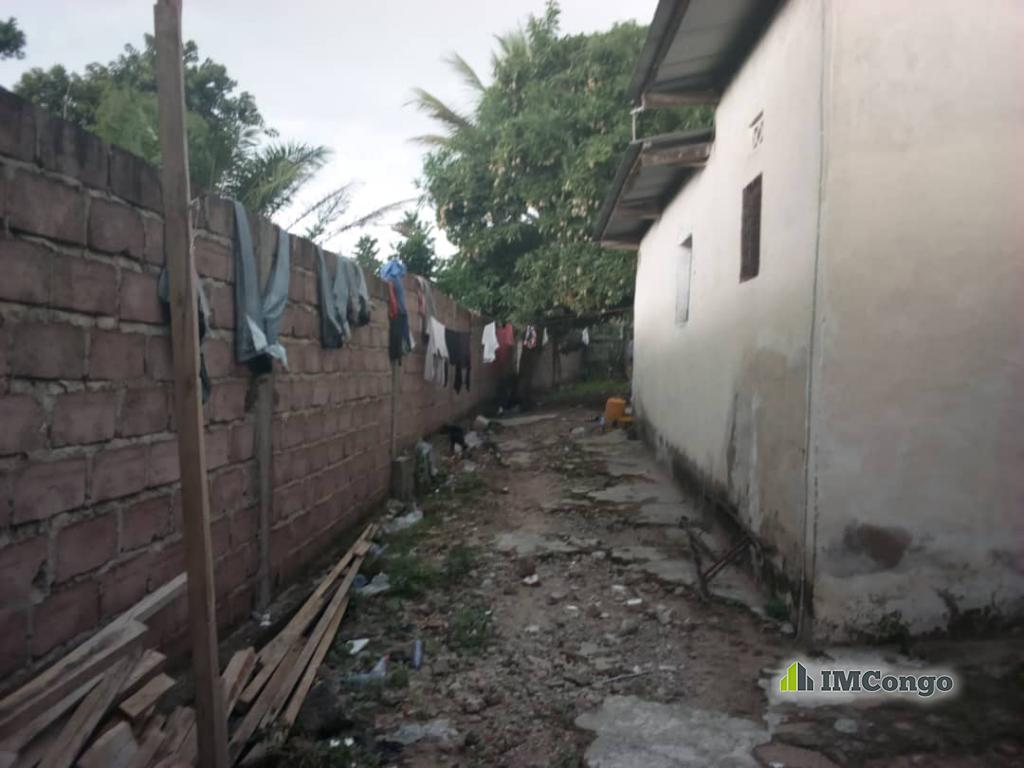 Yaku uzisha Mpango - Mtaa UPN Kinshasa Ngaliema