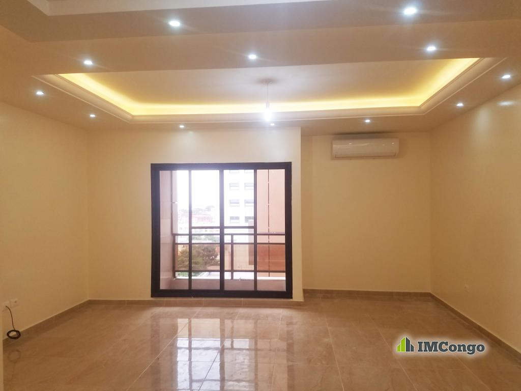 A louer Appartement de Standing - Centre ville  Kinshasa Gombe