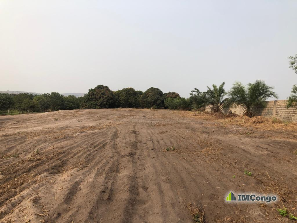 For Sale Concession - Neighborhood KIMPOKO Kinshasa Nsele