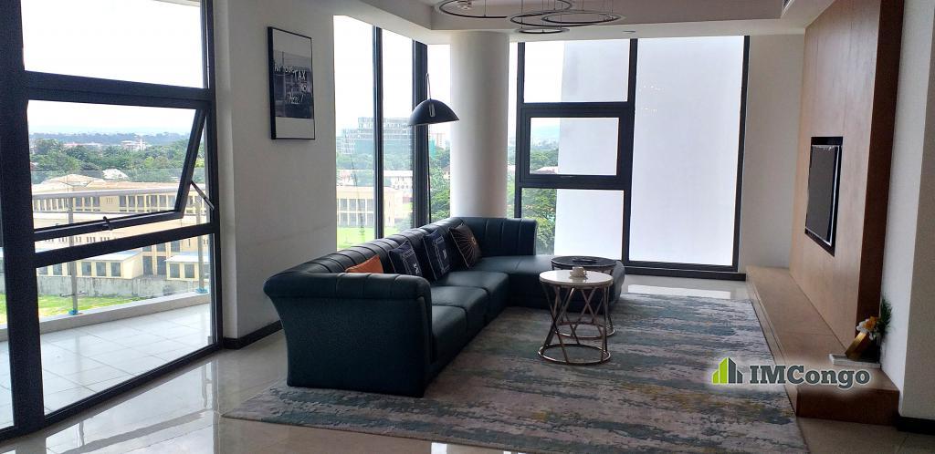 A louer Appartement de standing meublé - Centre-ville Kinshasa Gombe
