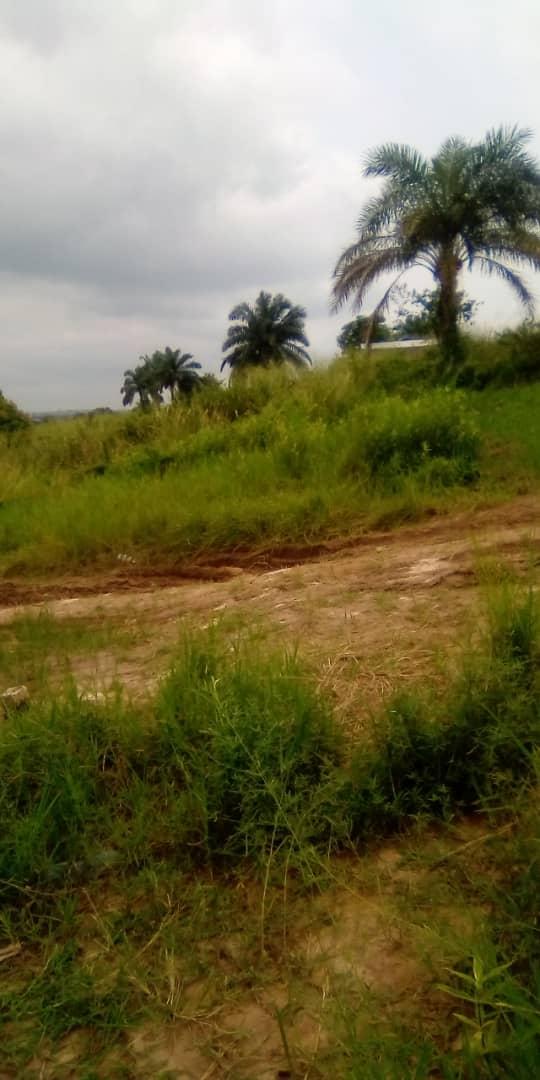 Yaku uzisha Mpango - Mtaa Mbudi Kinshasa Mont-Ngafula