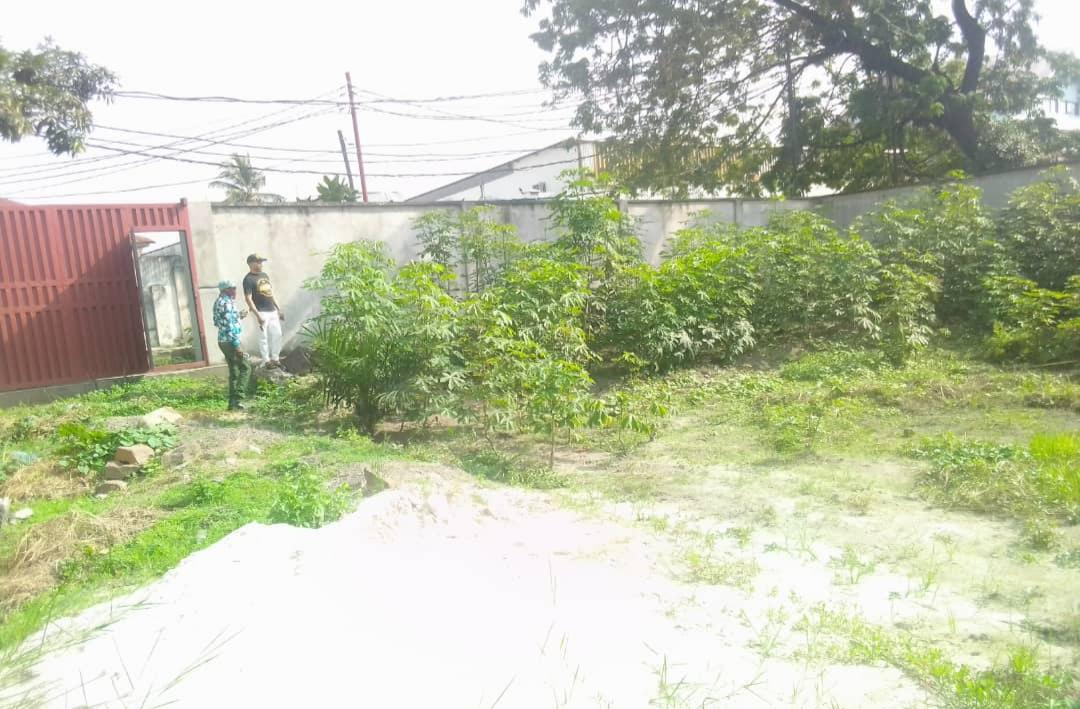 A vendre Terrain  - Quartier Industriel Kinshasa Limete