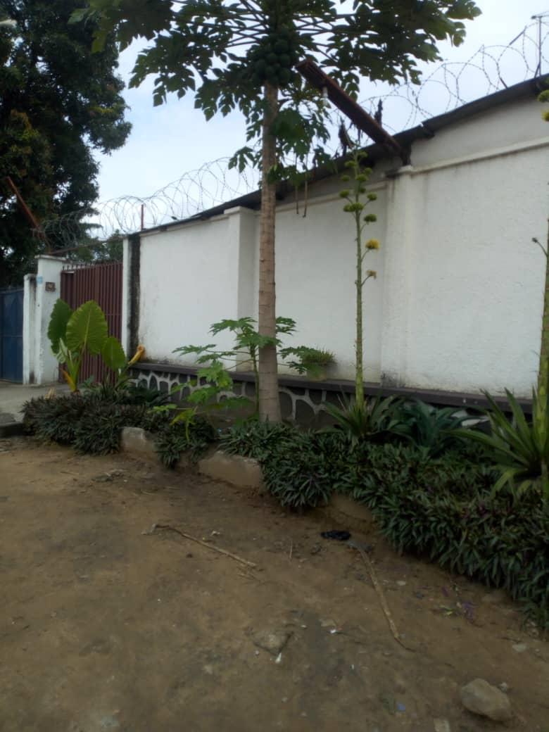 Yaku uzisha Nyumba - Mtaa Wenze Kinshasa Kintambo