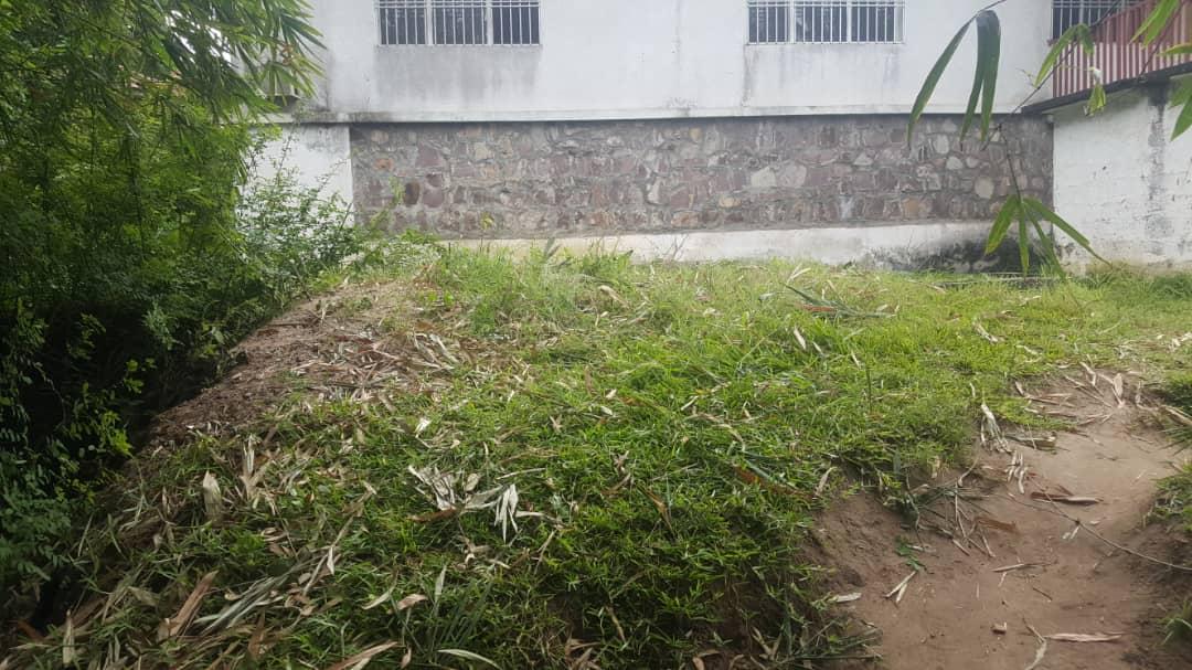 A vendre Terrain - Quartier Bumba Kinshasa Ngaliema