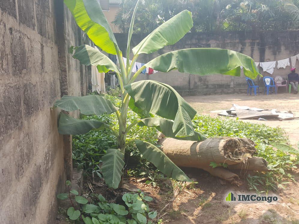 For Sale Lopango - Quartier kin Kinshasa Ngaliema