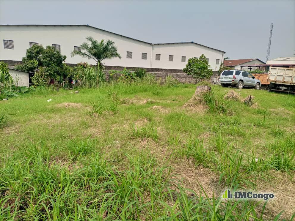 For Sale Plot - Neighborhood Kingabwa Kinshasa Limete