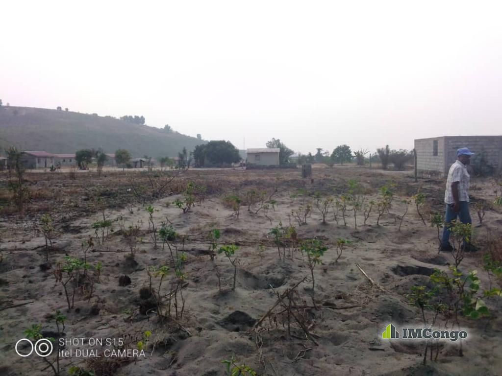 A vendre Ferme - Nsele Kinshasa Nsele