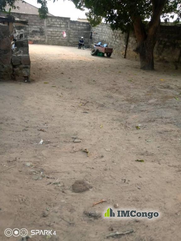 A vendre Terrain - Quartier Ma campagne Okapi  Kinshasa Ngaliema