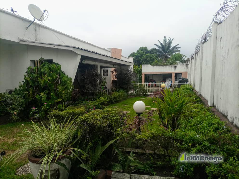 A louer Maison - Quartier Ma campagne II Kinshasa Ngaliema