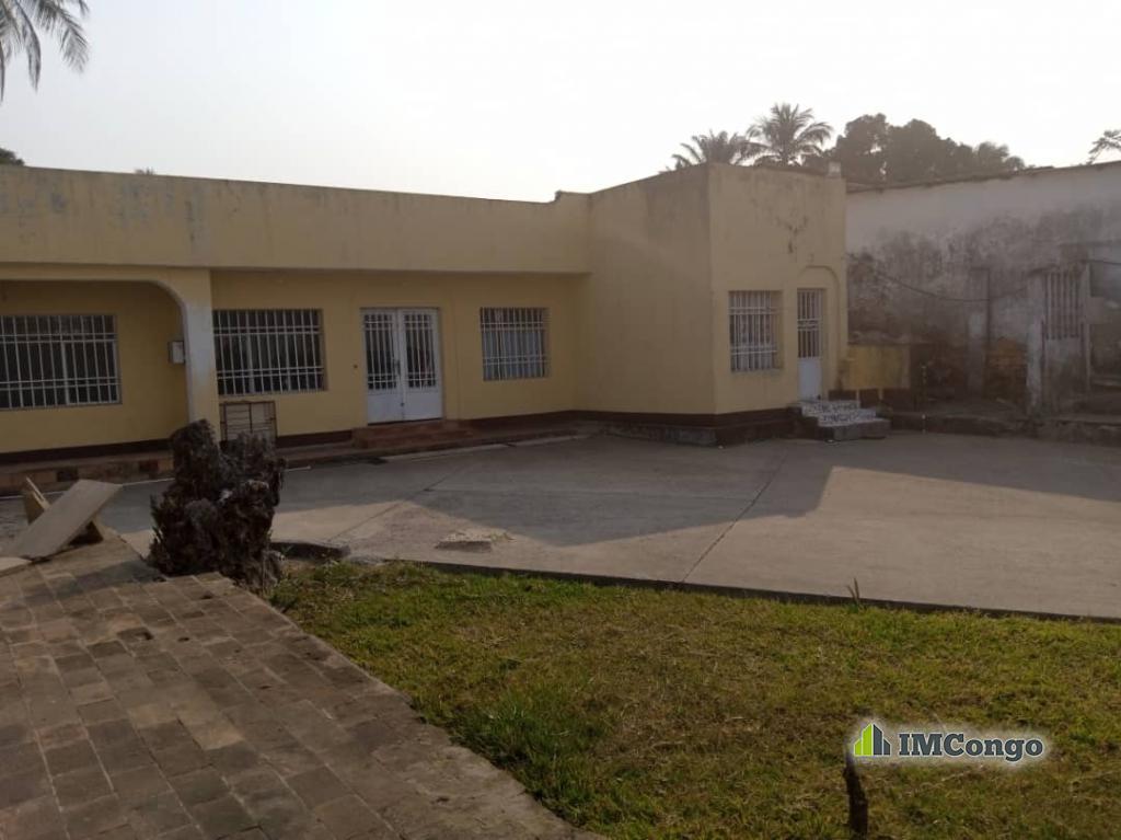 Kofutela Lopango - Quartier Pigeon  Kinshasa Ngaliema